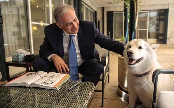 netanyahu dan anjingnya
