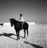 60 tahun Bin Zayid